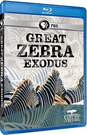 Courtesy:  PBS