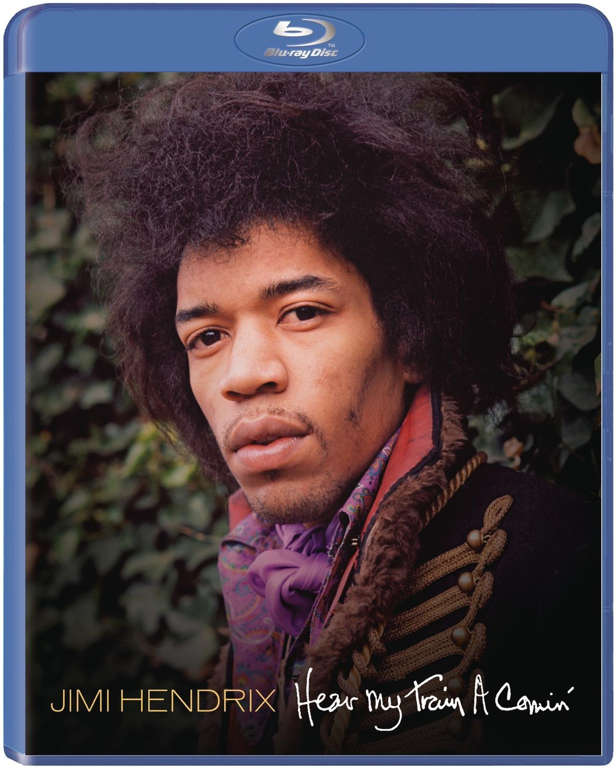 http://philspicks.files.wordpress.com/2013/11/jimi-hendrix-hear-my-train-a-comin.jpg