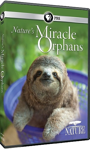 Nature S Miracle Babies Episode
